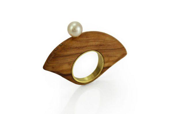 anello Ulivo