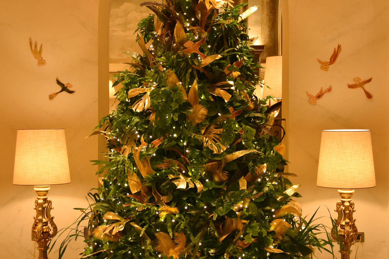 Chez Dédé firma l'albero di Natale di Hotel Eden
